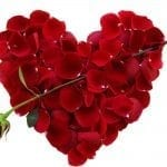 images-of-valentines-day-flowers-roses